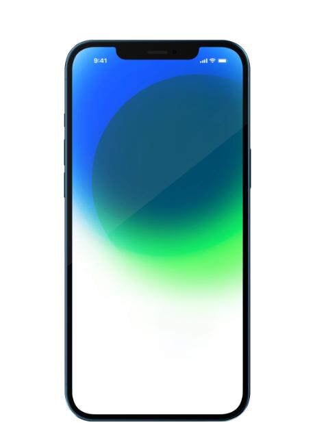 Apple iPhone 12 Pro Express Reparatur München